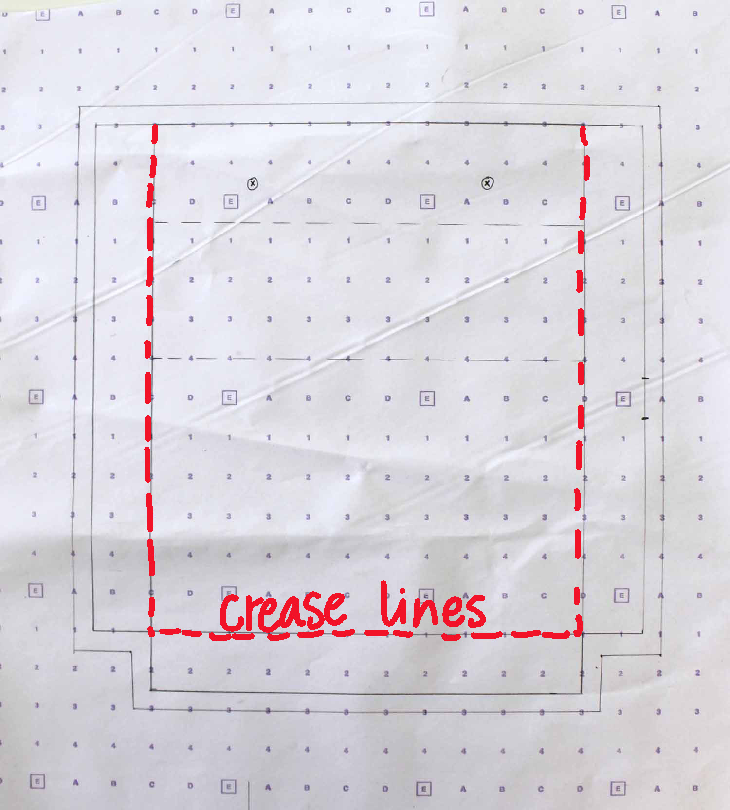 S crease lines